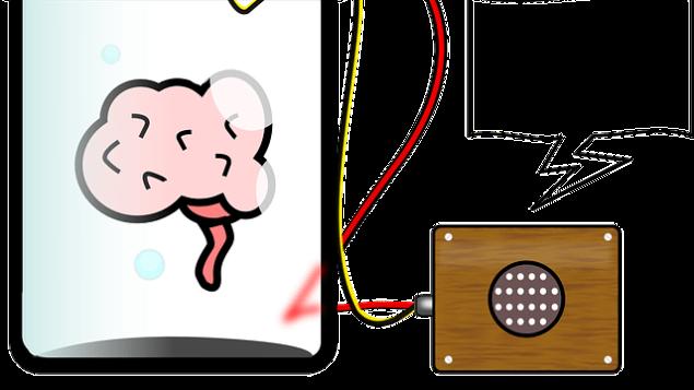 brain-153040_640