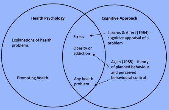 Cog_health_blue
